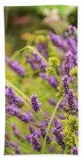 Summer Lavender In Lush Green Fields Beach Towel