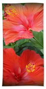 Summer Time Beauties - Hibiscus - Dora Sofia Caputo Beach Towel
