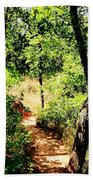 Summer Trail  Beach Towel