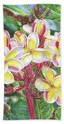Summertime Kauai Island Plumeria Watercolor By Jenny Floravita Beach Towel