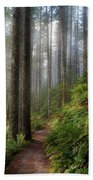 Sun Beams Along Hiking Trail In Washington State Park Beach Towel