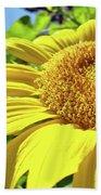 Sun Flower Art Sunlit Sunflower Giclee Prints Baslee Troutman Beach Towel