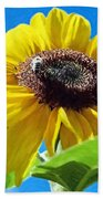 Sun Flower - Id 16235-142743-3974 Beach Towel