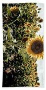 Sun Flowers  Beach Towel