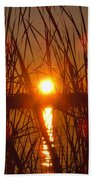 Sun In Reeds Beach Towel