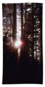 Sun In The Forest  Beach Towel