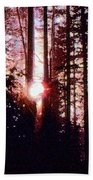 Sun In The Forest Two  Beach Towel