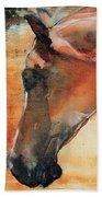 Sun Kissed Abrabian Beach Towel by Jani Freimann