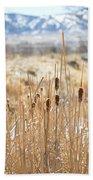 Sun Kissed Cattails - Casper Wyoming Beach Towel
