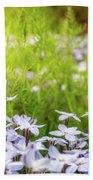 Sun-kissed Meadows With White Star Flowers Beach Sheet