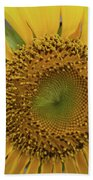 Sun Of Flowers Beach Towel