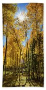 Sun Peaking Through The Aspens  Beach Towel