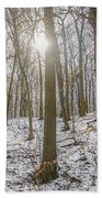 Sun Peaking Through The Trees - Fairmount Park Beach Towel