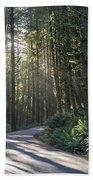 Sun Rays Through The Forest Beach Sheet