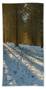 Sun Setting On Winter Woods Beach Towel