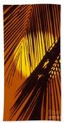 Sun Shining Through Palms Beach Towel