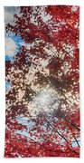 Sun Sky Clouds And A Red Maple Beach Towel