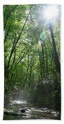 Sun Through The Trees Beach Towel