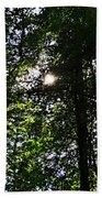 Sun Through Trees In Forest Beach Towel