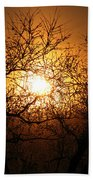 Sun Trees Beach Towel