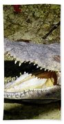 Sunbathing Croc Beach Towel