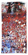 Sundrenched Rosehips Beach Towel