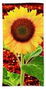 Sunflower 2 Beach Sheet
