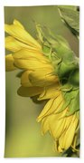 Sunflower 2016-1 Beach Towel
