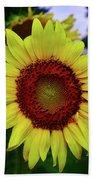 Sunflower After A Summer Rain Beach Towel