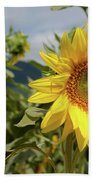 Sunflower And Peaks Of Otter Beach Towel