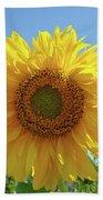 Sunflower Art Prints Sun Flower 2 Giclee Prints Baslee Troutman Beach Towel