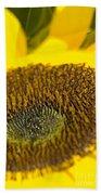 Sunflower Close-up Beach Towel