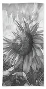 Sunflower Dawn Black And White Drawing Beach Towel