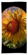 Sunflower Dawn In Oval Beach Towel