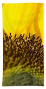 Sunflower Detail Beach Towel