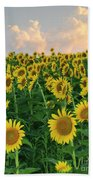Sunflower Faces At Sunset Beach Towel