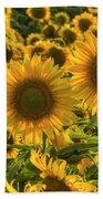 Sunflower Family Beach Towel