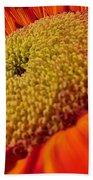 Sunflower Fire 1 Beach Sheet
