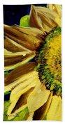 Sunflower Glow Beach Towel by Patti Ferron