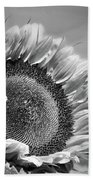 Sunflower In Black And White Beach Towel
