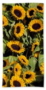 Sunflower Near Van Gogh Museum Beach Towel