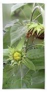 sunflower No.7 Beach Towel