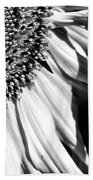 Sunflower Petals In Black And White Beach Towel