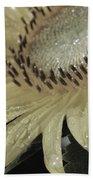Sunflower Rain Beach Towel