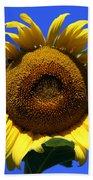 Sunflower Series 09 Beach Sheet