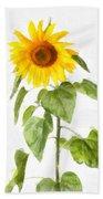 Sunflower Watercolor Beach Towel