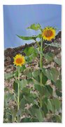 Sunflowers And A Stone Wall Beach Towel