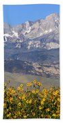 2a6742-sunflowers And Mount Humphreys  Beach Towel