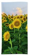 Sunflowers In The Sky Beach Towel
