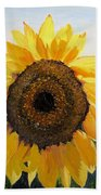 Sunflowers Squared Beach Towel